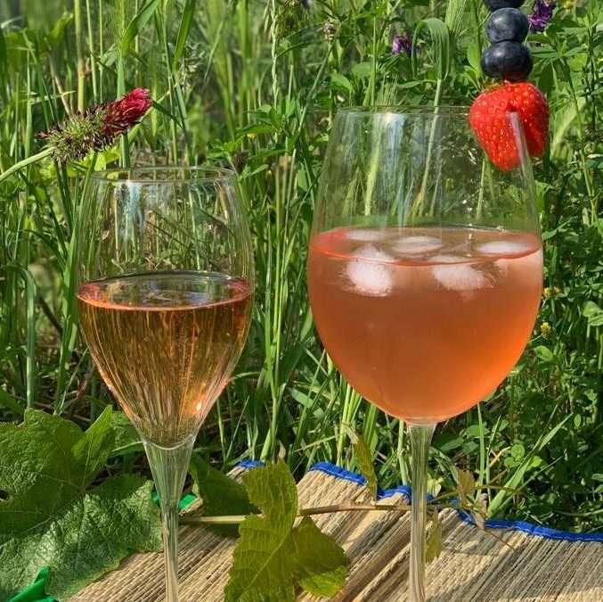 Sommer, Sonne & Sonnenschein–Rezeptideen mit Wilkers Rosé